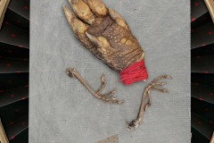 """A closeup vignette of a lizards foot wrapped with red thread and two birds legs within a decorated frame. A card states """" just my luck I have to take a red card"""""""