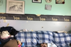 Baby laying on a couch beneath wolf wallpaper and family portraits