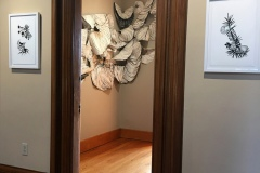 Site specific Installation at the Newport Art Museum. An overlapping stream of flowery, muscle tissue like donut forms overlap and rise up a wall.