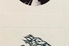 maggienowinsongoing series of photopolymer prints based observational  herbarium drawings at UMASS Amherst ki_17