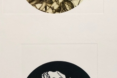 ongoing series of photopolymer prints based observational  herbarium drawings at UMASS Amherst