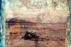 encaustic and oil collage of an image of a map with an image of a ram and an image of the Death Valley desert on birch panel