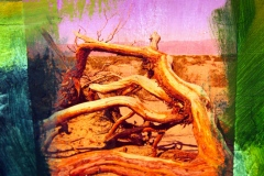 """""""painted and collaged on canvas, an image  of dried  tree limbs on the desert floor with a pink sky."""""""