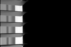 Black and white photograph of window blinds