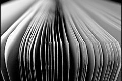 Black and white photograph of a close up of book pages