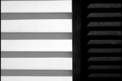 Black and white photograph of a house shutter