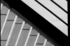 Black and white photograph of stairs and shadow