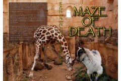 """Maze of Death"" is a book cover telling of a sheep named ""Bob"" who travels to Egypt. Bob gets accused of murdering a giraffe and is thrown into a maze. The cover depicts Bob and a giraffe inside a stone pyramid."
