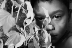 An image of a young child's face peering out from behind a houseplant. The child is in shadows looking at the viewer.