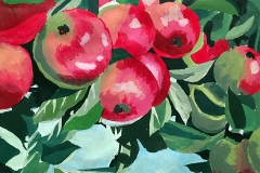 andreabialkowski_02apples on a branch, red as the primary color and greens as hue extension contrast.