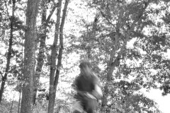 Blurred motion of figure riding a bike.