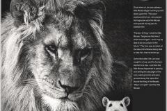 The Lion and the Mouse Layout.
