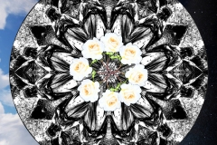 A black and white mandala with inner ring of white and orange flowers on a sky background.