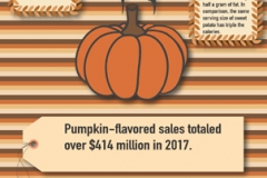 Vertical layout with horizontal lines and pumpkin art, map of the US showing pumpkin flavored sales.