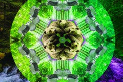 A green and gray mandala on a landscape background.