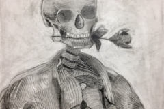 Charcoal drawing of a skeleton, holding a rose in its teeth.
