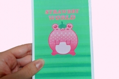Strawbby World cover with logo for fashion company.