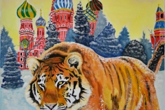 Siberian Tiger pounces through the snow, in front of the stunning St. Basile Church in Moscow, Russia. The church features beautiful colorful architecture, showing the red brick, and colorful designed steeples.