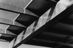 black and white photo of rafters