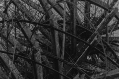 black and white image of an old broken piece of equipment with many spokes.